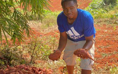 Young farmer racing to meet tourism sector demand