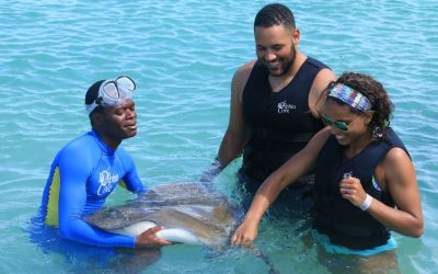Dolphin Cove Montego Bay… stingrays and cute camels